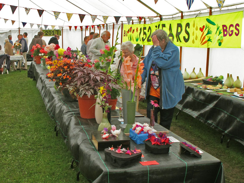 A photo of flowers at the Bream Summer Show.